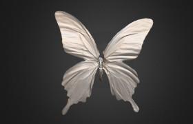 Butterfly 3D Model Scanned by KSCAN 3D Scanner