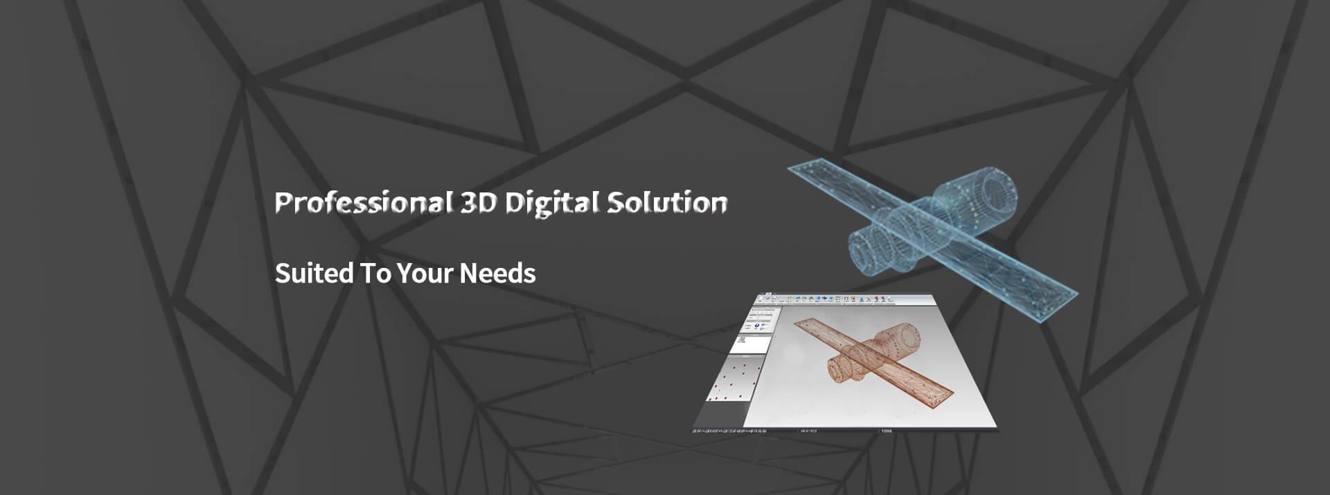 3D Solution