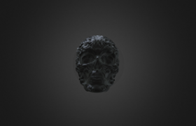 Human Skull Carving Scanning by PRINCE 3D Scanner