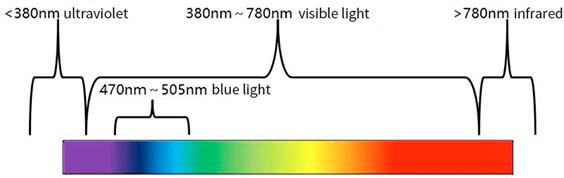 spectrum, infrared light, visible light